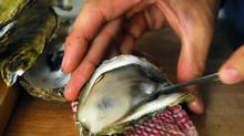 Shuck your own in Prince Edward Island. (Sheryl Nadler/The Canadian Press)