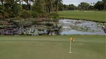 Lily pond at Jupiter Island Club