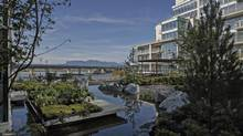 River Green comprises eight buildings and 458 units built around extensive landscaping and water elements that fuse private gardens with community amenities (Jim Cheng)