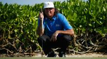 Pat Perez reads a putt on the 15th green during the final round of the OHL Classic at Mayakoba on Nov. 13, 2016. (Gregory Shamus/Getty Images)