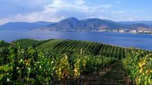 The lakeside community of Peachland, just a 15-minute drive from West Kelowna, is an affordable alternative, with easy access to surrounding B.C. wineries. (iStock)