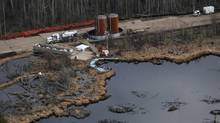 The 2011 rupture of Plains Midstream Canada's Rainbow pipeline spilled 28,000 barrels of oil into a northern Alberta muskeg. A long-awaited report examining the safety of Alberta's pipeline network says the province needs to sharpen its requirements for the inspection of high-risk pipelines, and eliminate 'gaps' in rules for stopping spills in lake and rivers. (Ian Jackson/THE CANADIAN PRESS)