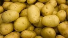 Potatoes (Kevin Van Paassen/Kevin Van Paassen/The Globe and Mail)
