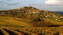 The vineyards around the hilltop town of Sancerre, in France's Loire Valley, produce some of the finest (but quite razor-sharp in terms of acidity levels) sauvignon blancs. (Associated Press)