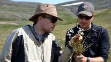Dr. Jeff Saarela from Canadian Museum of Nature and research assistant Paul Sokoloff with Eriophorum (cottongrass). (Roger Bull/Canadian Museum of Nature)