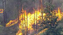 B.C.'s wildfire season is picking up steam after a wet and cool start to the summer. (Darren Handschuh/The Canadian Press)