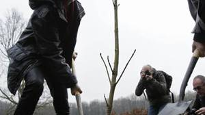 Amsterdam city councilor Marijke Vos, left, and Anne Frank House director Hans Westra, right, plant a seedling of the Anne Frank tree in Amstelveen, on the outskirts of Amsterdam, in December, 2009.