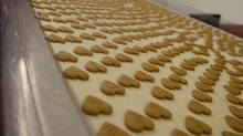 Hundreds of freshly baked ginger snap cookies prepare to be packaged at ShaSha Co. factory (Photo by Rosa Park)