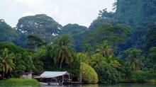 A canal outside Totuguero National Park, Costa Rica. (KENT GILBERT/AP)