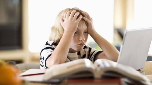 Home   Simcoe Muskoka Catholic District School Board Dyslexia Help in Public Schools