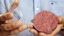 Professor Mark Post holds the world's first lab-grown beef burger during a launch event in west London August 5, 2013. The in-vitro burger, cultured from cattle stem cells, the first example of what its creator says could provide an answer to global food shortages and help combat climate change, was fried in a pan and tasted by two volunteers. The burger is the result of years of research by Post, a vascular biologist at the University of Maastricht, who is working to show how meat grown in petri dishes might one day be a true alternative to meat from livestock.The meat in the burger has been made by knitting together around 20,000 strands of protein that has been cultured from cattle stem cells in Post's lab. REUTERS/David Parry/pool (BRITAIN - Tags: ANIMALS ENVIRONMENT FOOD SCIENCE TECHNOLOGY) FOR EDITORIAL USE ONLY. NOT FOR SALE FOR MARKETING OR ADVERTISING CAMPAIGNS (POOL/REUTERS)