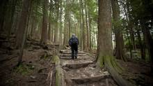 The steepness and icy weather can make the Grouse Grind in North Vancouver a dangerous course. (JOHN LEHMANN/The Globe and Mail)