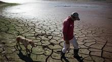 A resident walks with a dog across the drying bottom of the Paraibuna dam, part of the Cantareira water system that provides greater Sao Paulo with most of its water, in Redencao da Serra, August 11, 2014. (Roosevelt Cassio/REUTERS)