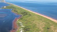 The Conway Sandhills are part of a 50-kilometre-long sand dune and wetland complex on the north shore of western Prince Edward Island. This entire chain of dunes is a high priority for the Nature Conservancy of Canada's work in Prince Edward Island. (JOHN SYLVESTER)