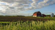 Prices are shooting up faster in the most productive farming areas in the country. In Southwestern Ontario, prices have jumped 30 to 50 per cent a year in some counties, according to a recent report from real-estate appraiser Valco in London, Ont. (MARK SPOWART FOR THE GLOBE AND MAIL)