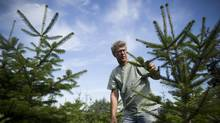 Dan Hoogwater farms Christmas trees near the property the Township of Langley has put up for sale. He worries what potential owners will do to the land. (John Lehmann/The Globe and Mail)