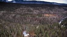An area near Hazelton, B.C., which is in the region of B.C. where pipeline companies are doing preliminary work for LNG projects. (John Lehmann/The Globe and Mail)