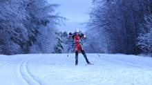 David McMahon sent us this photo of two-time Olympian Lise Meloche, cross country skiing in the Gatineau Park after a recent snow-storm (David McMahon/David McMahon)