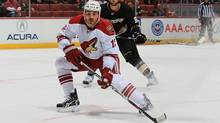 Paul Bissonnette of the Phoenix Coyotes, a big tweeter, skates against the Anaheim Ducks at Honda Center on Sept. 21, 2010 in Anaheim, Calif. (JEFF GROSS/GETTY IMAGES/Getty Images)