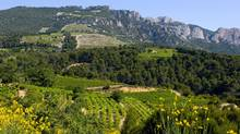 The vineyards on the foothills outside Beaumes de Venise produce a famous dessert wine. (Copyright,)