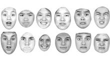 Sample facial images used in the study. According to the results, the Asian participants had a harder time than Caucasians telling the difference between a face meant to look fearful compared with one showing surprise, and a face supposedly expressing disgust compared with one displaying anger.