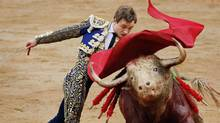 Today's topics: Doctors' fee cuts, speculation, bull fighting and hockey, simple weddings … and more (DANIEL OCHOA DE OLZA/AP)