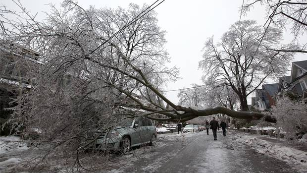 Pedestrians walk under a large tree that fell on Chester Street in Toronto, on Dec. 22, 2013. (Deborah Baic/The Globe and Mail)