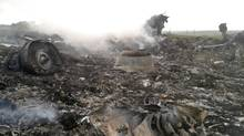 The site of a Malaysia Airlines Boeing 777 plane crash is seen in the settlement of Grabovo in the Donetsk region, July 17, 2014. The Malaysian airliner MH-17 was reportedly shot down over eastern Ukraine by pro-Russian militants on Thursday, killing all 295 people aboard, a Ukrainian interior ministry official said. (MAXIM ZMEYEV/REUTERS)