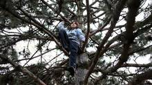 "Colin Stainton,11, sits in a tree he climbed near his home in Toronto on April 24, 2012. His mother says that is one of his favourite places to ""chill."" Stainton and his mother Cheryl Marsh took part in a program called the Coping Power Program, that helped Colin and Cheryl deal with Colin's anger. On Wednesday, CAMH will announce a $10 million donation from Margaret McCain for mental health programs for children and youth, that will be used, among other things, to hire more staff, create programs and start an inpatient unit for youth with both mental health and addictions. (Deborah Baic/Deborah Baic/The Globe and Mail)"