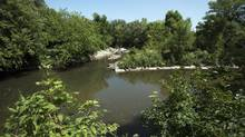Once a prime location for swimming and fishing, the Don River today is a shadow of its former self, but efforts are underway to restore its glory. (Fred Lum/The Globe and Mail) (Fred Lum/The Globe and Mail)