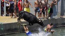 "A cow chasing revellers jumps into the sea after being provoked during the ""Bous a la Mar"" festival in the eastern Spanish coastal town of Denia July 8, 2013. What does this have to do with a sales column? Raising the risk profile of a buyer sometimes takes a direct and, at times, aggressive selling approach. Not by browbeating, or by being rude or belligerent, but by asking the hard questions around a buyer's real objectives and obstacles. (HEINO KALIS/REUTERS)"