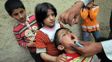 Afghan children being vaccinated. Without eradication, about four million children will contract polio in the next 20 years. AFP/GETTY IMAGES