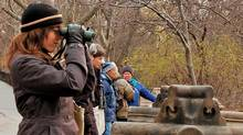Birders: The Central Park Effect, directed by Jeffrey Kimball