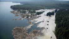 A aerial view shows the debris going into Quesnel Lake caused by a tailings pond breach near the town of Likely, B.C. Tuesday, August, 5, 2014. (JONATHAN HAYWARD/THE CANADIAN PRESS)