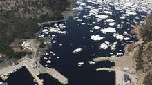 The port of La Scie, N.L. is shown in a handout photo taken from the CCGS Amundsen helicopter on June 8, 2017. (HO-David Barber/THE CANADIAN PRESS)