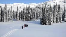 Ski touring at Sol Mountain. (Darryl Leniuk)