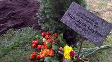 A cedar tree grows in honour of Jack Layton at a cemetery in Hudson, Que. A portion of the late NDP leader's ashes were scattered in a family plot alongside the grave of his father Robert, a cabinet minister in Brian Mulroney's government. (Karl Belanger/NDP)