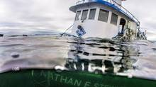 The tugboat Nathan E. Stewart is seen in the waters of the Seaforth Channel near Bella Bella, B.C., in an Oct. 23, 2016, handout photo. (THE CANADIAN PRESS/Heiltsuk First Nation/April Bencze)