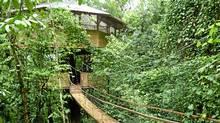 A swing bridge leads to an eco-friendly foot multi-level treehouse in Finca Bellavista. Costa Rica (Robin Esrock for The Globe and Mail/Robin Esrock for The Globe and Mail)