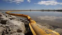 A boom stretches out to contain a pipeline leak on the Gleniffer reservoir near Innisfail, Alta. on Tuesday, June 12, 2012. (JEFF McINTOSH/THE CANADIAN PRESS)