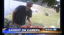Footage of a suspected vegetable-stand thief was aired on a Maryland TV station, prompting hundreds of comments/shares.