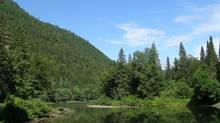 CPAWS wants watershed protection increased along the Kedgwick River in the Restigouche Wilderness Waterway. (Roberta Clowater/CPAWS)