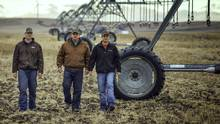Gary Standford, centre, with his sons Sean, left, and Matthew at the family farm near Magrath, Alta. (David Rossiter for The Globe and Mail)
