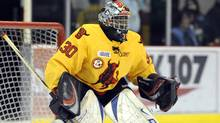 Malcolm Subban of the Belleville Bulls (Aaron Bell/OHL Images)