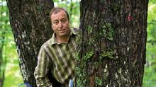 Martin Malenfant, owner of Erabliere Escuminac, poses in a maple and birch forest at the company installations in Escuminac, Quebec, August 11, 2011. (MATHIEU BELANGER/Report of Business)