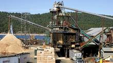 The Western Forests Products Ladysmith Sawmill Division IN operation and NOT affected by the BC forestry strike in Ladysmith, BC. (Deddeda Stemler/Deddeda Stemler for The Globe and Mail)