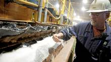 Rocanville Potash Corp mill production supervisor Dave Carter samples some potash on it process of being refined at the mill in Saskatchewan (DAVID STOBBE/REUTERS/David Stobbe)