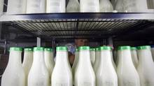 A group of Congress members are putting pressure on Ottawa to open the dairy and poultry markets under threat of being dropped from Trans-Pacific Partnership talks. (JOHN LEHMANN/JOHN LEHMANN/THE GLOBE AND MAIL)