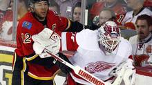 Detroit Red Wings goalie Jonas Gustavsson gets knocked into the boards by Calgary Flames' Jarome Iginla during first period NHL hockey action in Calgary, Alta., Wednesday, March 13, 2013. (Jeff McIntosh/THE CANADIAN PRESS)