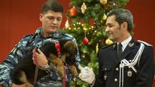 A Russian police officer shows a puppy, named Dobrynya, to a French police before presenting it in the French Embassy in Moscow on Monday, Dec. 7. (Pavel Golovkin/AP)